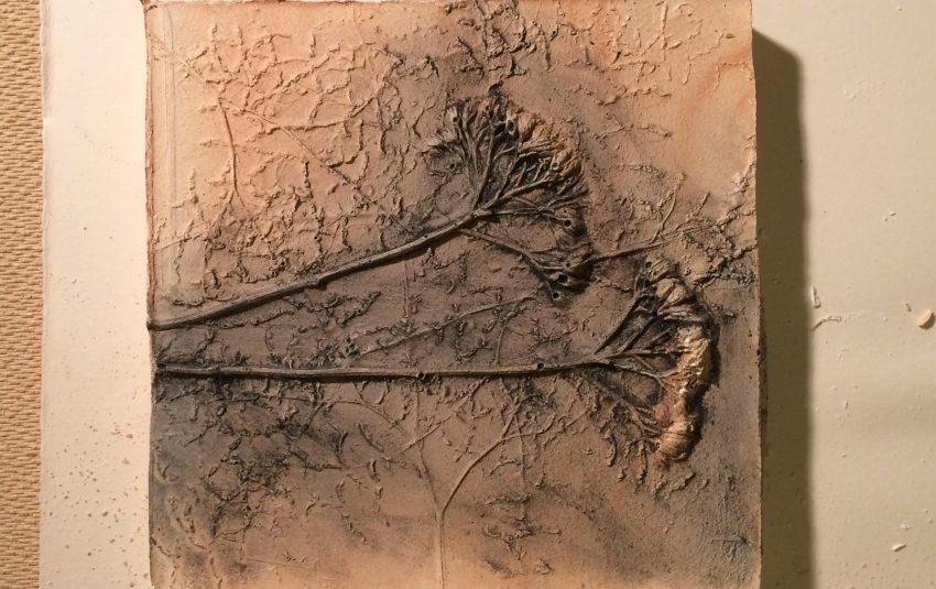 Fossilised Drawing Workshop